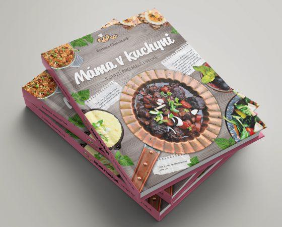 Kniha Máma v kuchyni